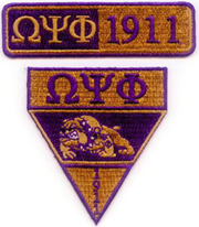 Omega_Military_Patches_small.jpg