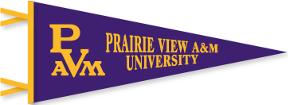 PrairieViewpennantsm2