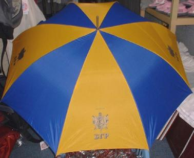 Sigma_Gamma_Rho_Umbrella.jpg