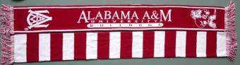 Alabama_AM_Scarf_HBCU.jpg