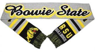 BOWIE_SCARF-788x1015-1-2945