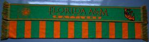 Florida_AM_Scarf_HBCU.jpg