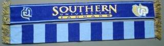 Southern_Scarf_HBCU.jpg