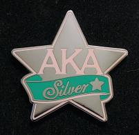 AKA_Silver_Star_Pin_2