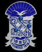PBS_shield_jewel_pin